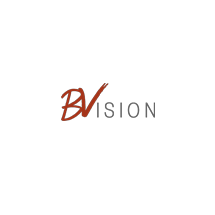 BVISION